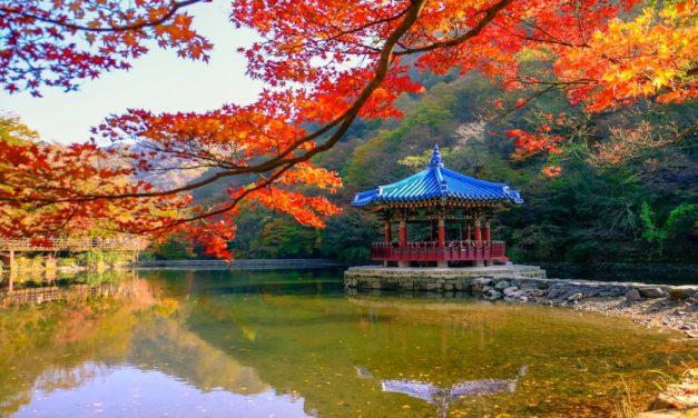 Südkorea: Doch kein Verbot von Kryptowährungen