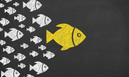 ICO-Influencer: Eine selbsterfüllende Prophezeiung?