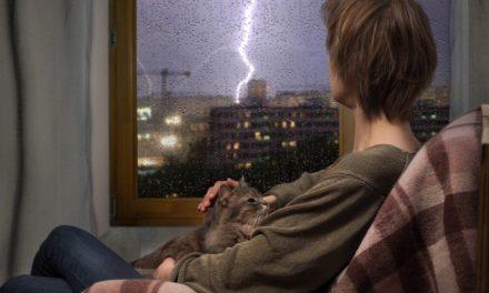Blitzeinschlag bei Bitcoin – Lightning-Netzwerk und IoT