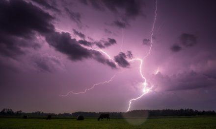 Eclair-Wallet: Lightning Network fürs Smartphone