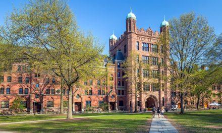 Investment-Strategien: Haben zwei Professoren aus Yale die goldene Lösung?