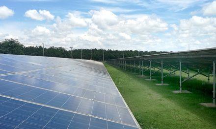 Bitcoin in Grün: Spanische Krypto-Miner setzen auf Solarenergie