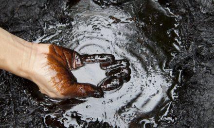 Venezuela will OPEC den Petro aufdrängen