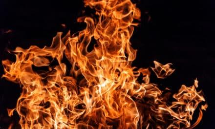 Bermuda bekommt ersten legalen Security Token namens FIRE