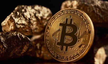 Bitcoin ist das neue Gold und die Krypto-Gemeinde umgarnt Elon Musk – Das Meinungs-ECHO