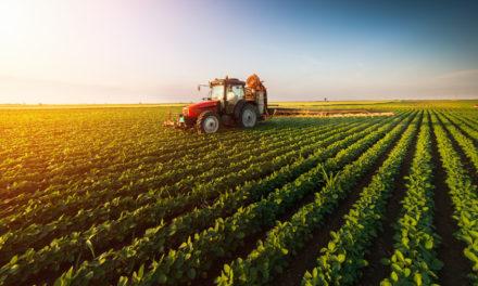 Mit Blockchain gegen Ernteausfälle: Oxfam-Kooperation versichert Sri Lankas Bauern