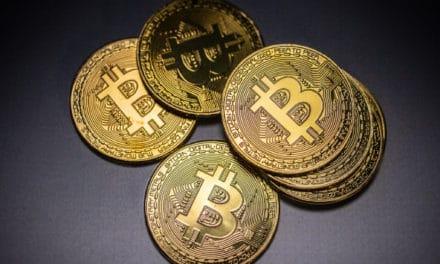 Neue Studie: Professionelle Bitcoin-Trader halten die Füße still