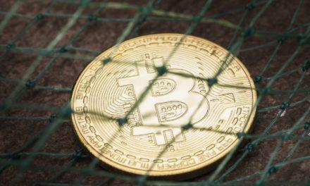 Ehepaar wegen Bitcoin-Betrug in Millionenhöhe verurteilt