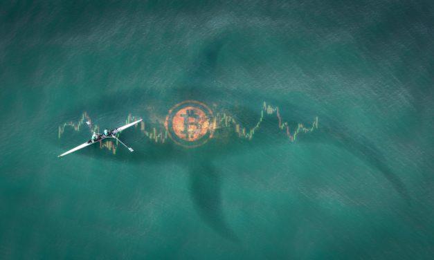 500-Millionen-US-Dollar-Investment: Hedgefonds plant Bitcoin-Mega-Coup