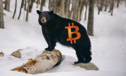 Studie: Bitcoin-Investoren bearisher als gedacht