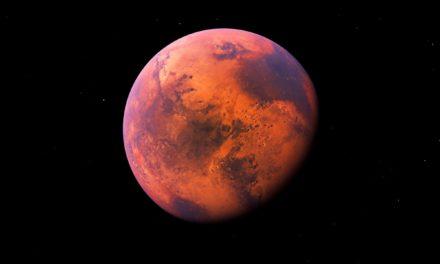 Mond oder doch gleich Mars? Elon Musk befeuert Bitcoin-Hype