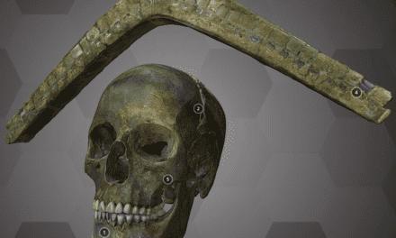 Wie ein bronzezeitlicher Schädel ins 3D-Museum kommt